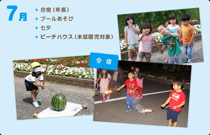 7月の行事/合宿(年長)、プールあそび、七夕、ピーチハウス(未就園児対象)